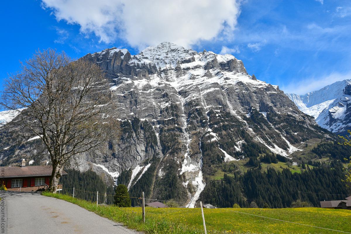 Grindelwald-(24)