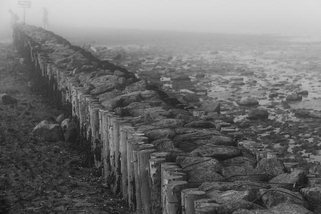 a walk in foggy mud