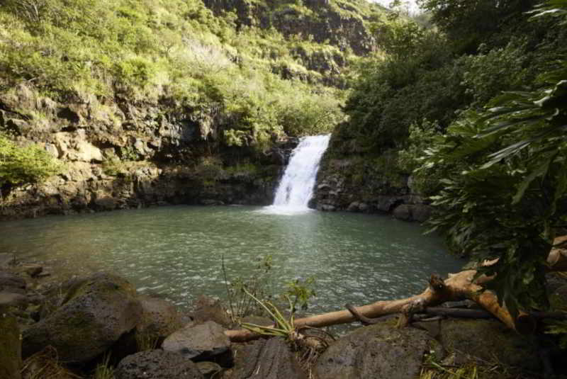 You Had Me at Aloha waterfall