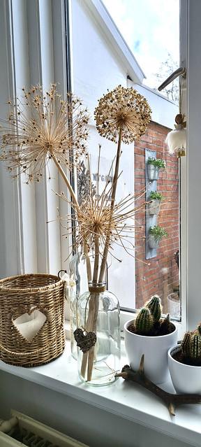 Vaas met berenklauw cactus in de vensterbank Riviera Maison windlicht rattan