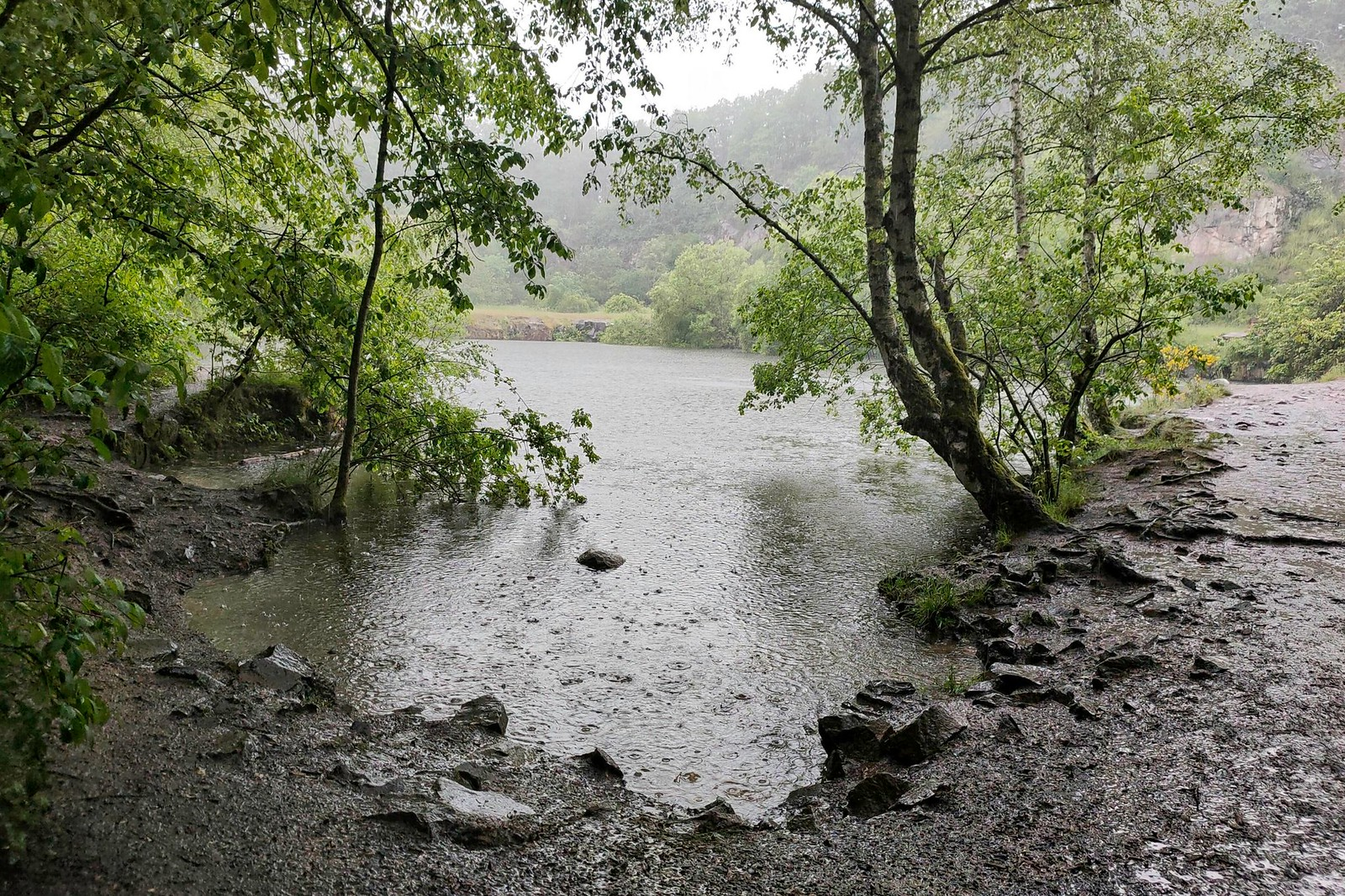Silbersee - Vitaltour Geheimnisvoller Lemberg