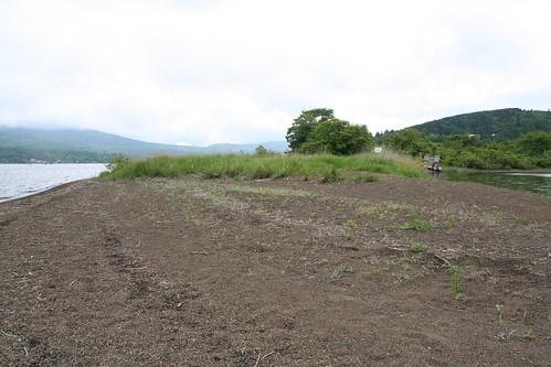 山中湖 みさきキャンプ場 例の岬の先端