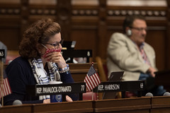 State Rep. Cindy Harrison reads legislation during a House session on Friday, June 4, 2021.