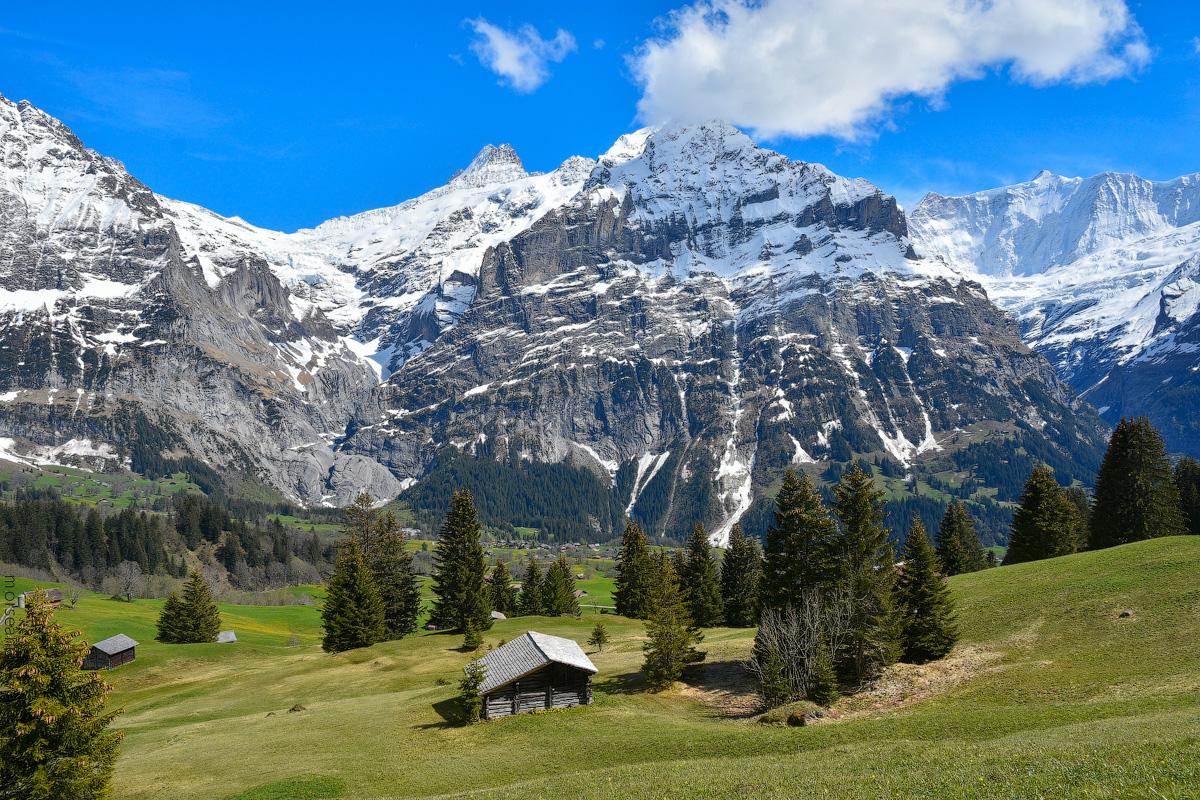 Grindelwald-(34)