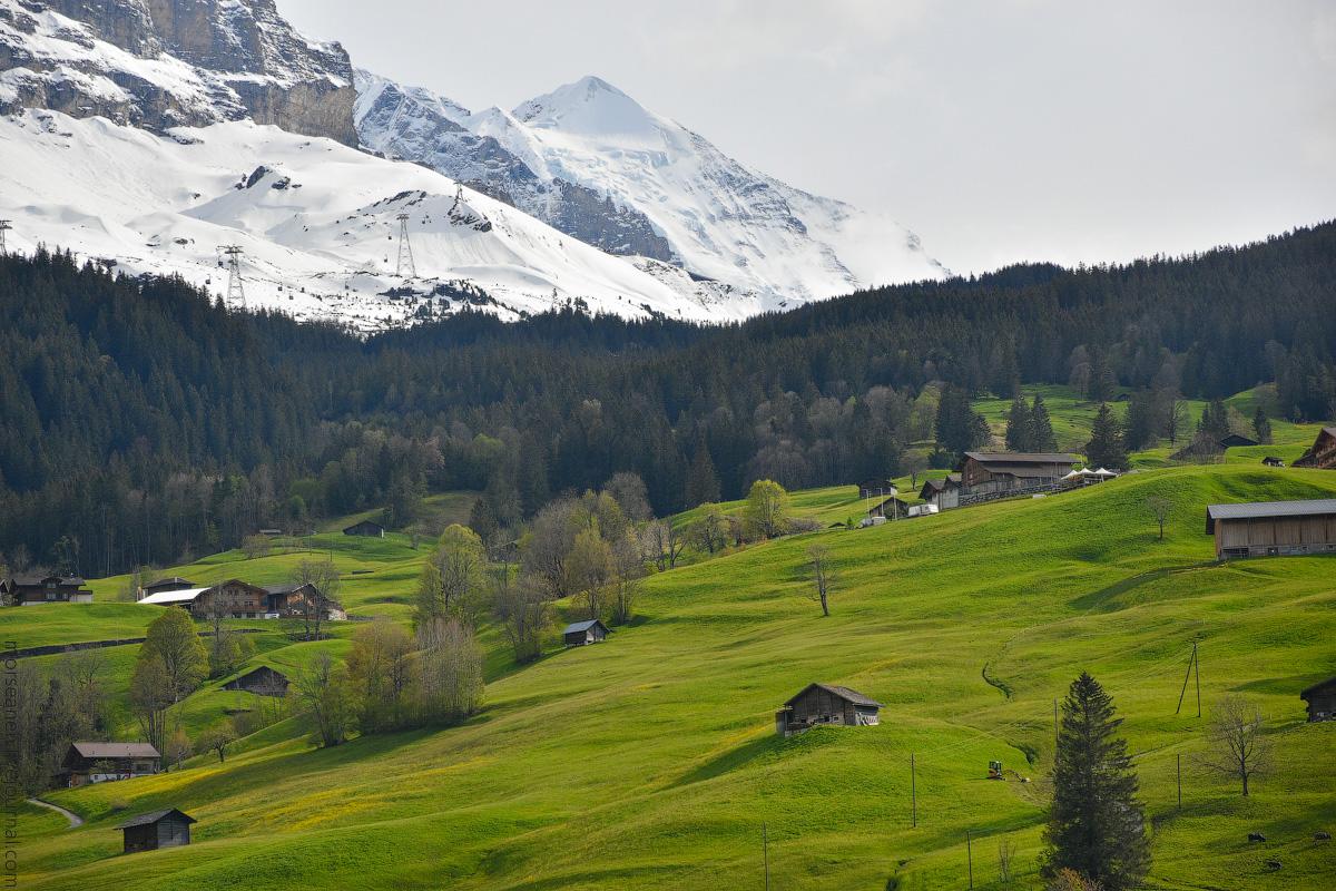 Grindelwald-(19)