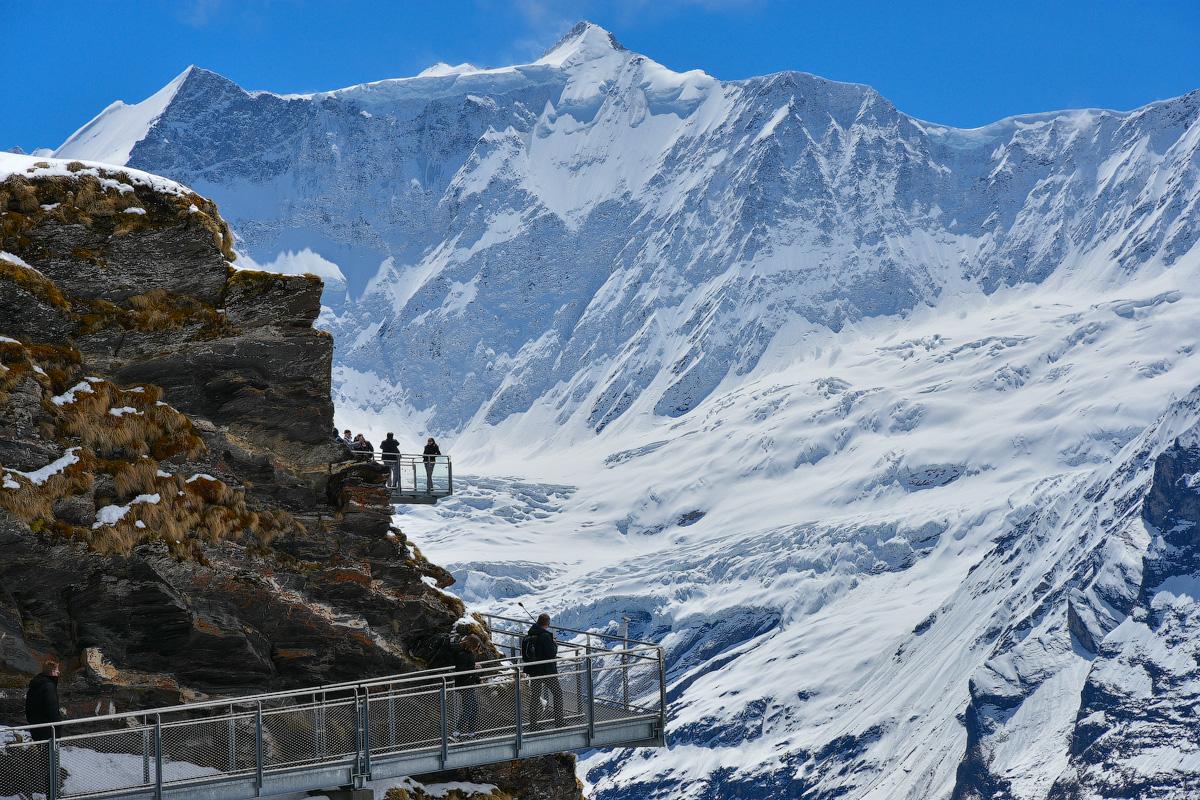 Grindelwald-(8)