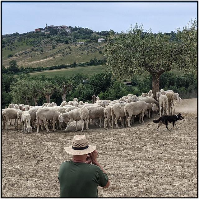 Terrabianca_Abruzzo