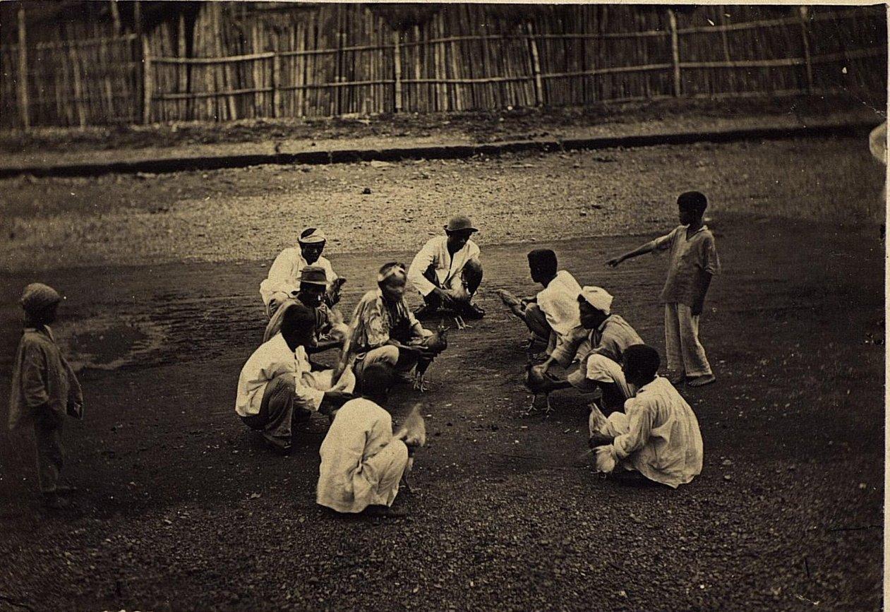Случайный уличный бой петухов. Филиппины, город Манила. 1872