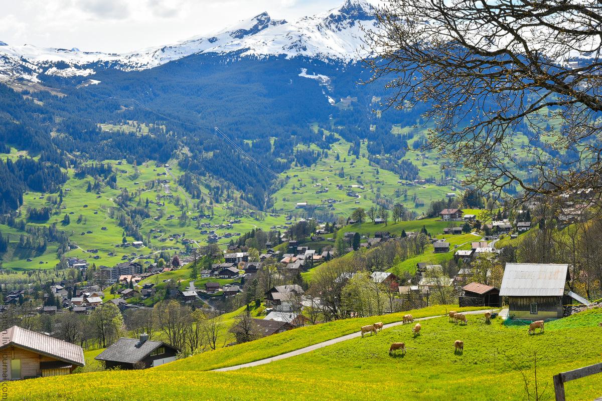 Grindelwald-(26)