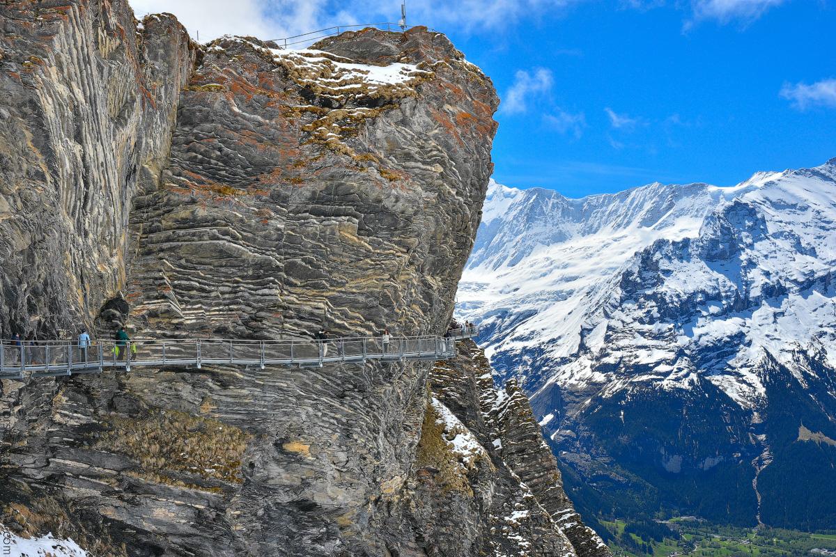 Grindelwald-(11)