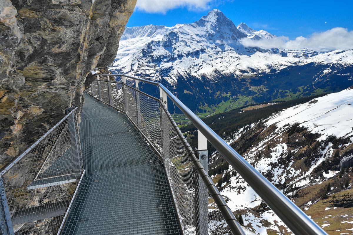 Grindelwald-(9)