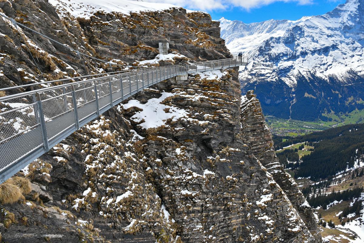 Grindelwald-(7)