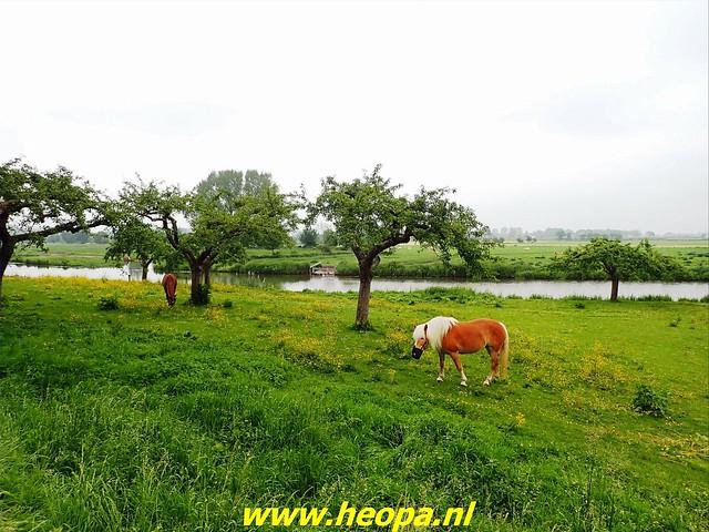 2021-06-05  Geldermalsen  rondje Lingen  (122)