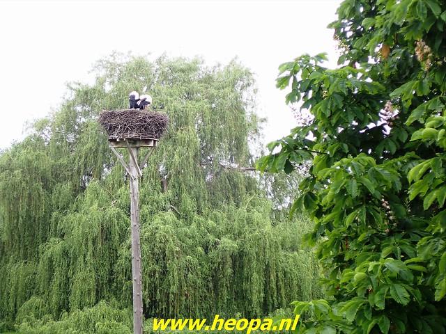 2021-06-05  Geldermalsen  rondje Lingen  (72)