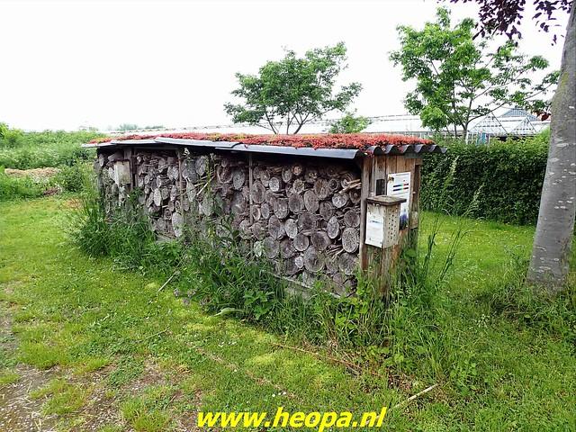 2021-06-05  Geldermalsen  rondje Lingen  (61)