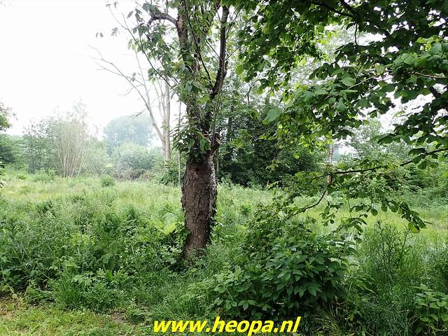 2021-06-05  Geldermalsen  rondje Lingen  (8)