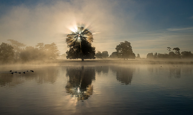 Another misty start to the day