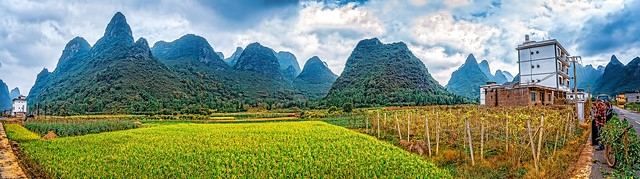 Rice Fields and Gum Drop Mountains