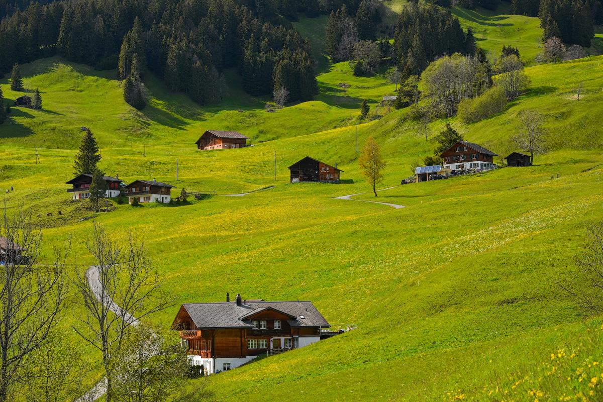Grindelwald-(25)