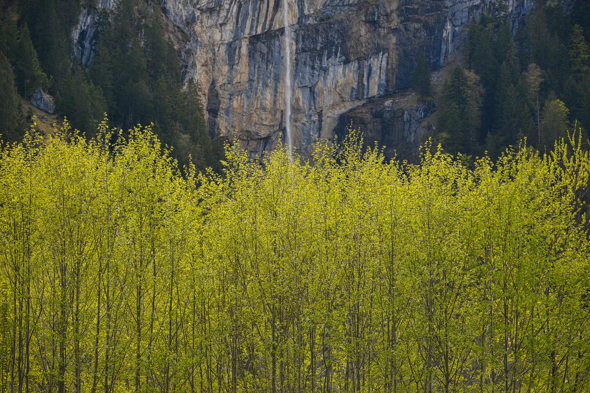 Grindelwald-(18)