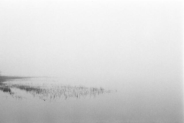 Foggy Beach 8