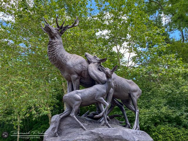 Scène de chasse, Sceaux, juin. 2021