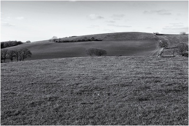 Countryside in black & white