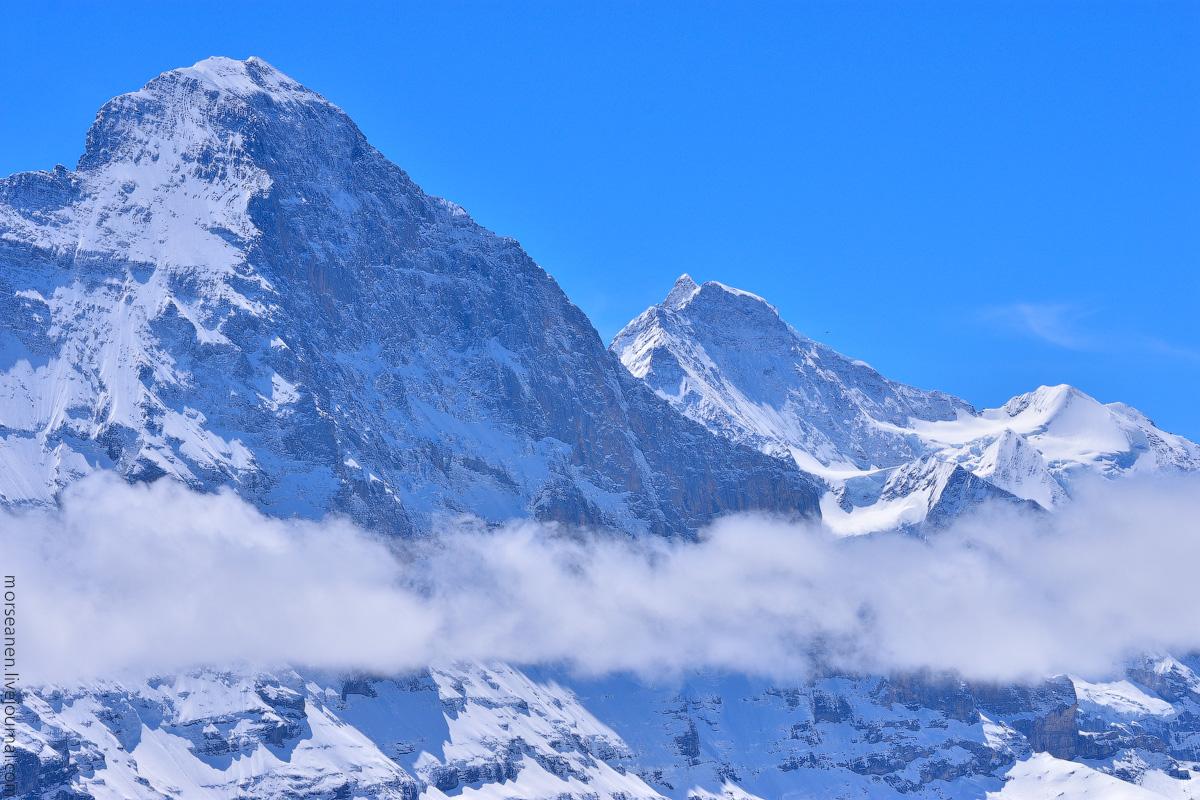 Grindelwald-(45)