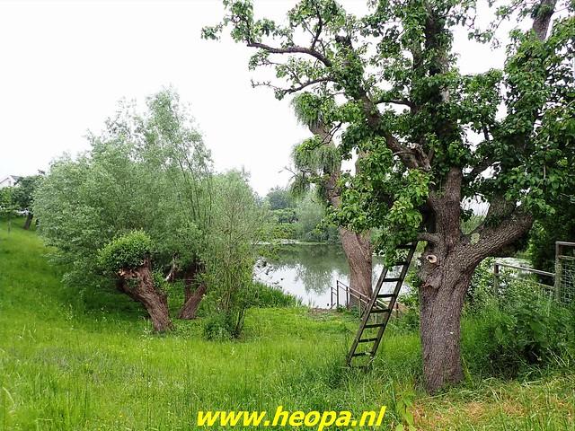 2021-06-05  Geldermalsen  rondje Lingen  (29)