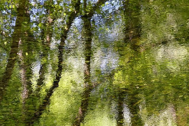 Reflets de rivière