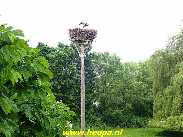 2021-06-05  Geldermalsen  rondje Lingen  (71)