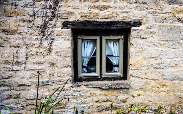 The Steel Window