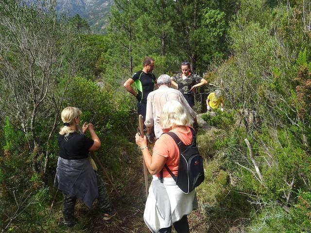 Démaquisage sentier de descente à la Sainte-Lucie depuis la piste RG
