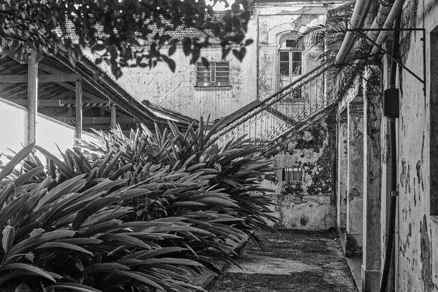 Courtyard between two wards.