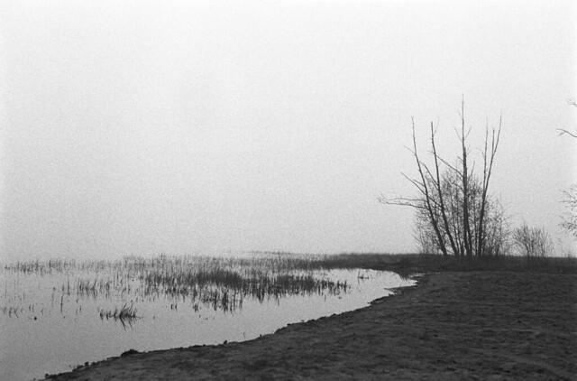 Foggy Beach 10