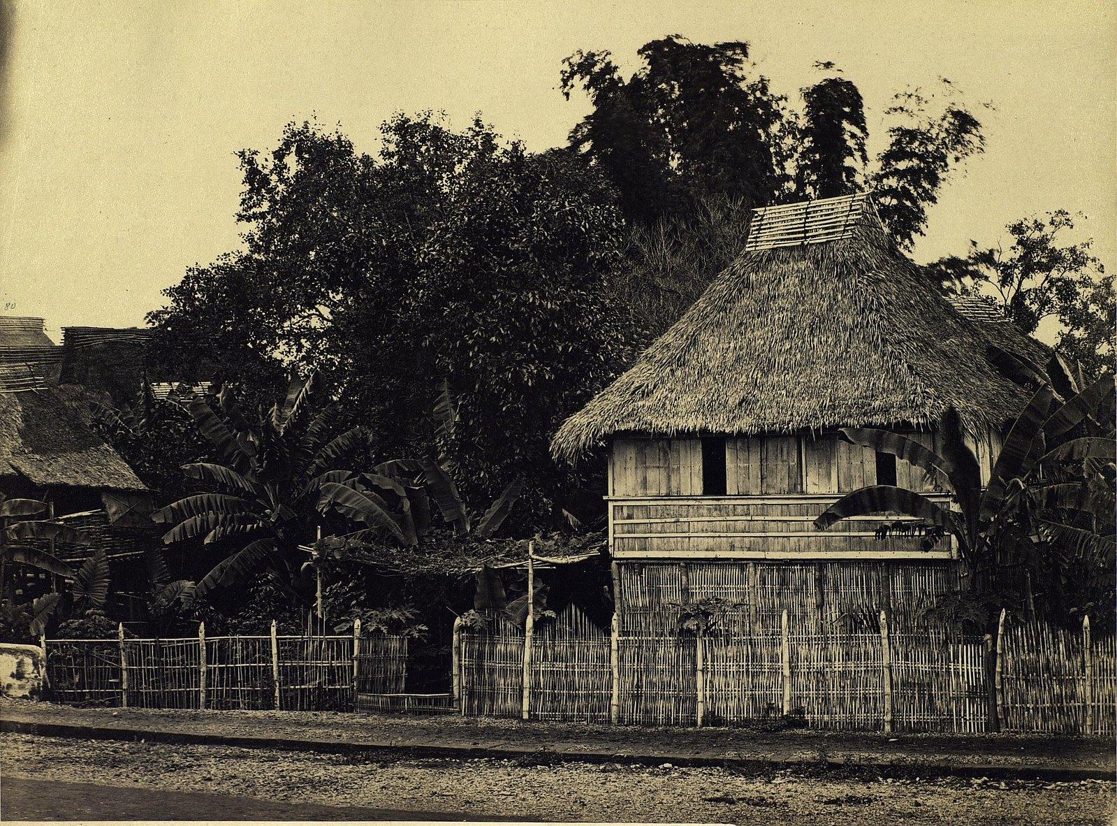 Тагальский дом около города Манила. 1872