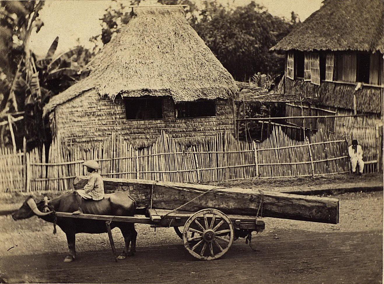 Способ перевозки тяжестей. Филиппины, город Манила. 1872