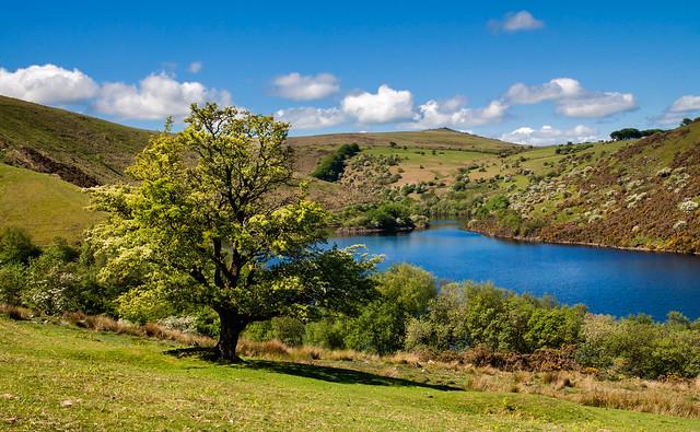 Meldon Reservoir Views