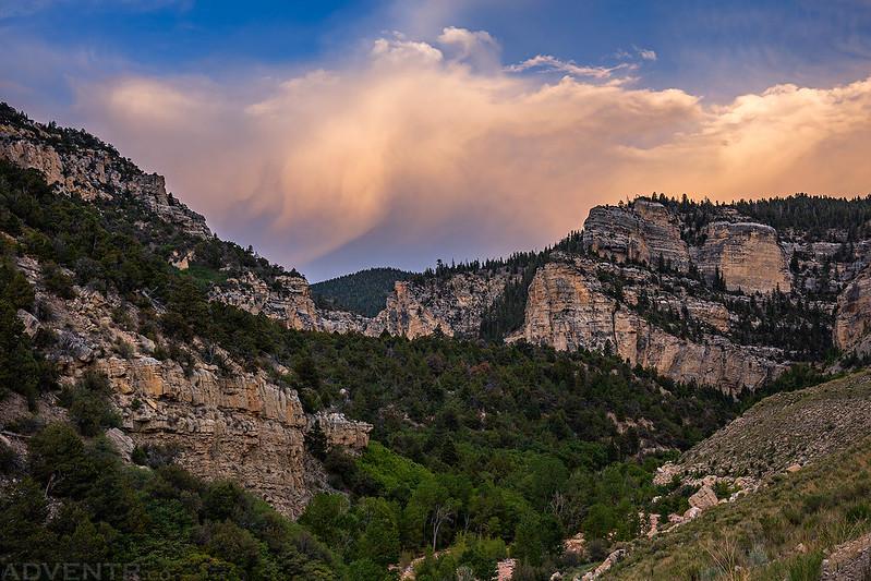 Cedar Canyon View