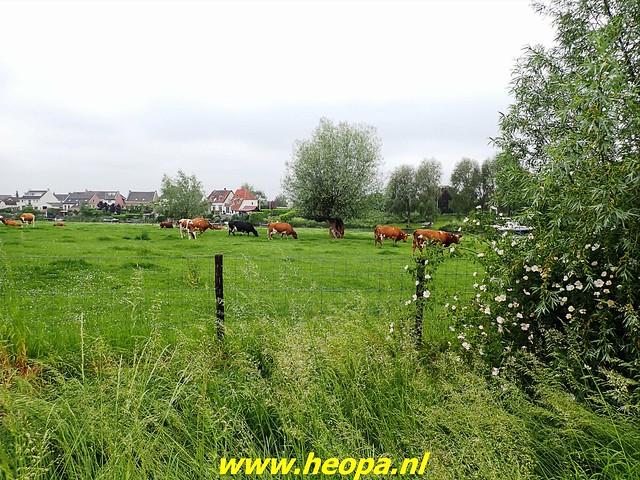 2021-06-05  Geldermalsen  rondje Lingen  (98)