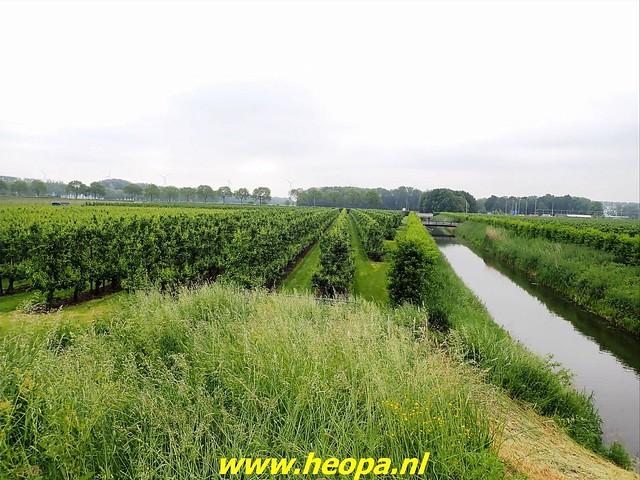 2021-06-05  Geldermalsen  rondje Lingen  (95)