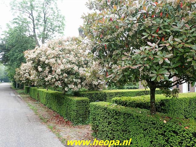 2021-06-05  Geldermalsen  rondje Lingen  (10)