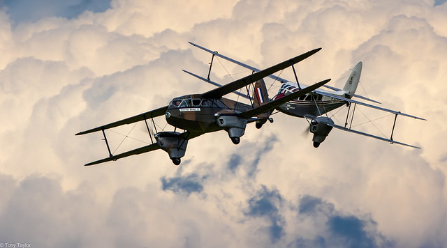 DH 89 Dragon Rapides