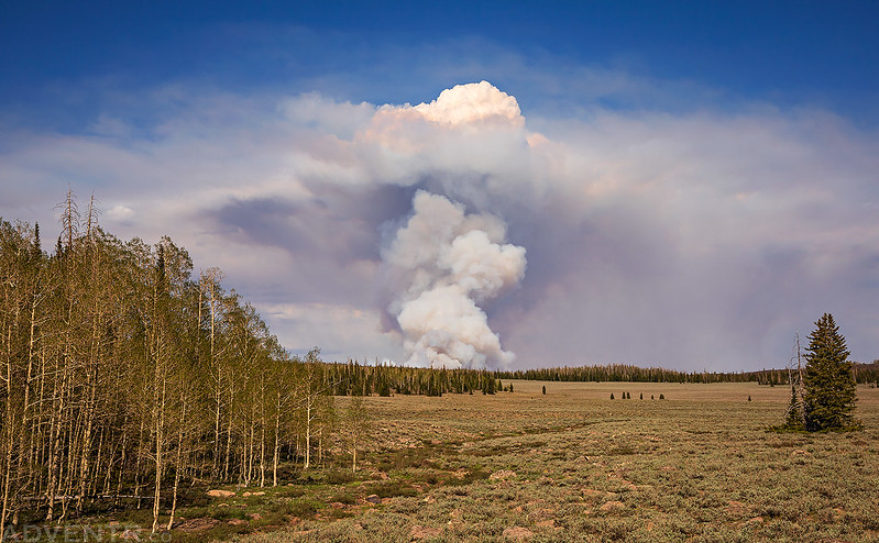 Mammoth Creek Wildfire