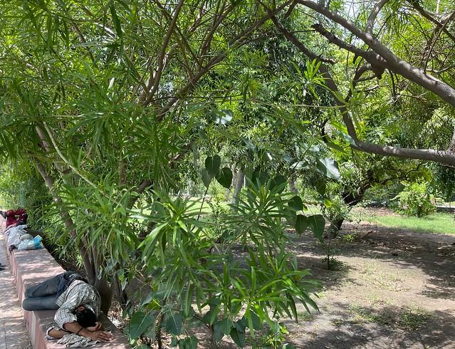 City Hangout - Secretive Garden, Outer Ring Road