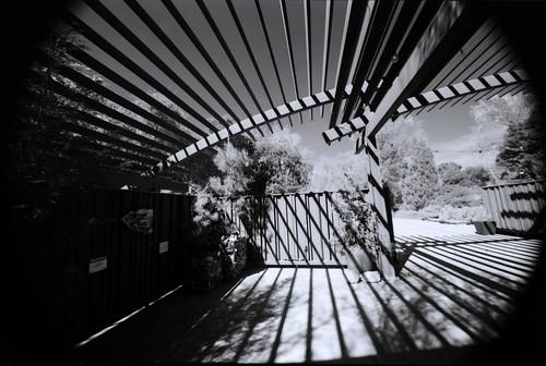 California Botanic Garden (26)