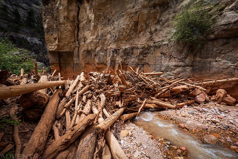 Log Dam