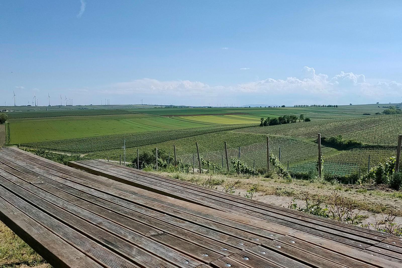 Tisch des Weines am Bodenprofil Kalksandstein (Hiwweltour Stadecker Warte)