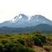 "<p><a href=""https://www.flickr.com/people/kodak260/"">Kodak Photographer NL</a> posted a photo:</p>  <p><a href=""https://www.flickr.com/photos/kodak260/51231513728/"" title=""190907 - Oregon - Mount Shasta Roadtrip - 03 Lake Shastina 1029""><img src=""https://live.staticflickr.com/65535/51231513728_217541eecc_m.jpg"" width=""240"" height=""160"" alt=""190907 - Oregon - Mount Shasta Roadtrip - 03 Lake Shastina 1029"" /></a></p>  <p>Mount Shasta (USA)<br /> <br /> In Explore<br /> <br /> <a href=""https://youpic.com/Kodak260"" rel=""noreferrer nofollow"">youpic.com/Kodak260</a><br /> <a href=""http://kodak260.nl/"" rel=""noreferrer nofollow"">kodak260.nl/</a></p>"