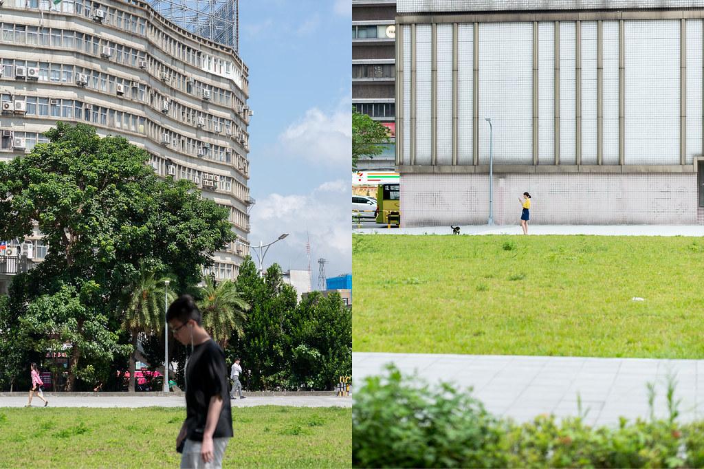 the city is a garden
